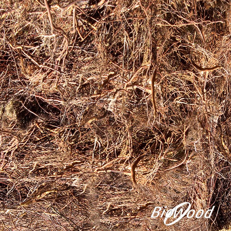 Erica Arborea per biofiltro - Biowood