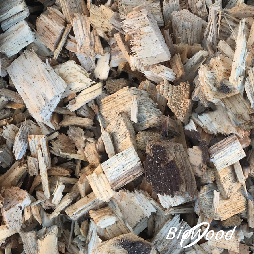 Cippato Latifoglia per Biofiltro - Biowood